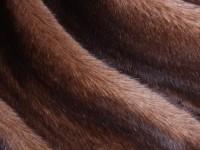 Новинка в нашем интернет-магазине - Меховой жилет из кролика с воротником, отделка норка (ART12-197).